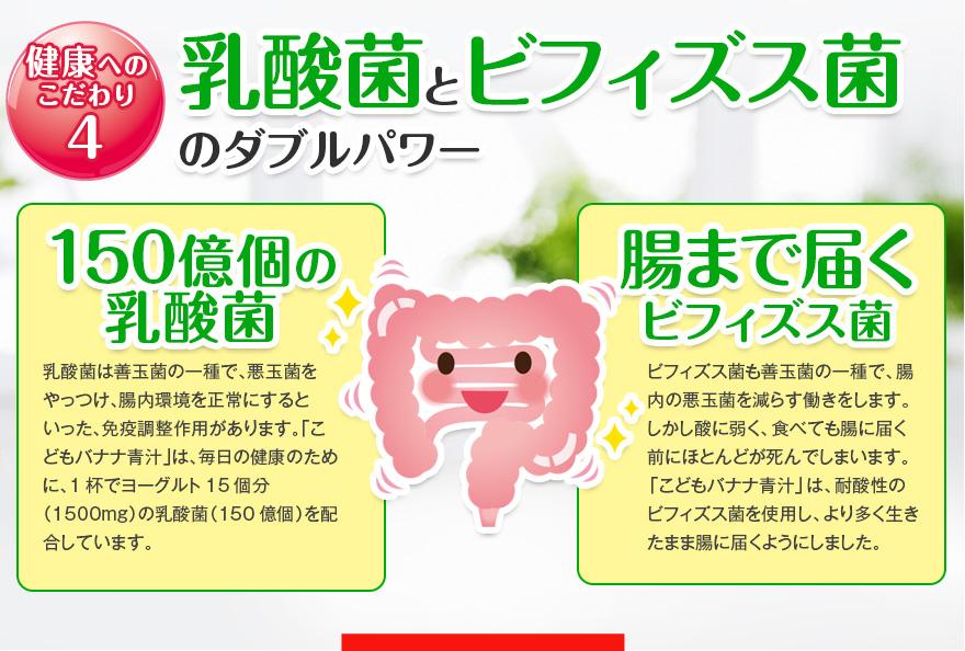健康へのこだわり4 乳酸菌とビフィズス菌のダブルパワー